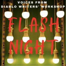 Flash Night logo